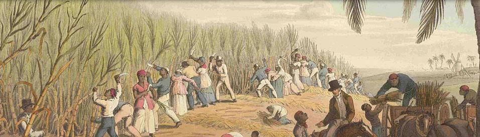 slavery agriculture