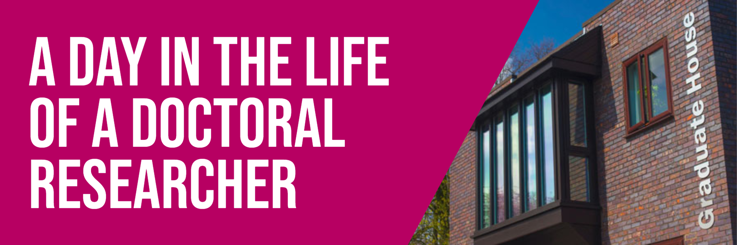 Reflecting on 'A Day in the Life of a Doctoral Researcher' 2020