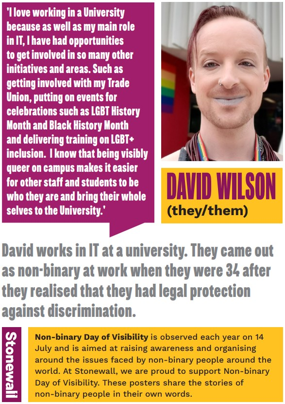 Image shows thumbnail of a Stonewall poster featuring David Wilson