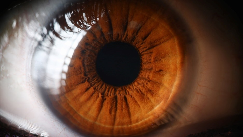Your monthly health check: Looking after your eyes